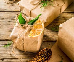 vegan gifts for her